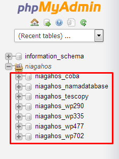 database wordpress