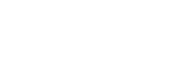 Wedio Support
