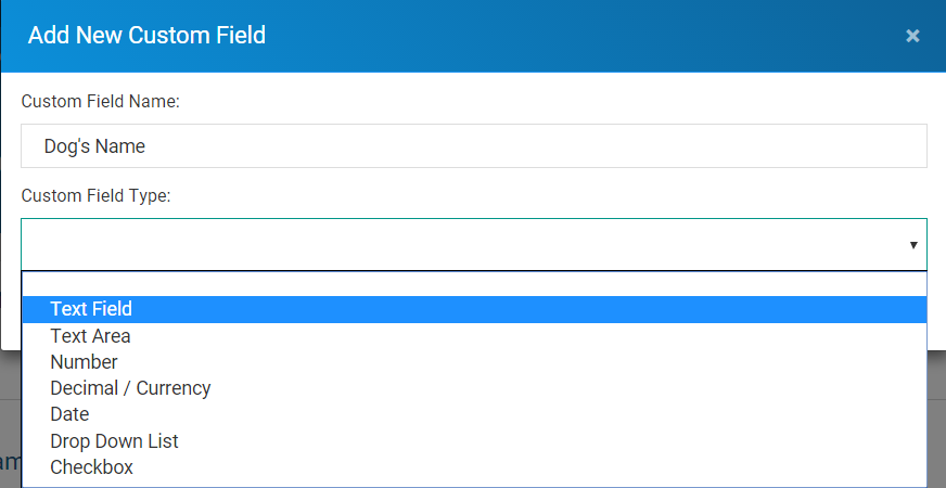 Custom_Fields_-_Creating_Text_Field.png