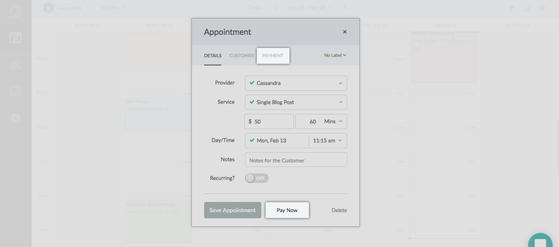 The Payment Tab of an appointment