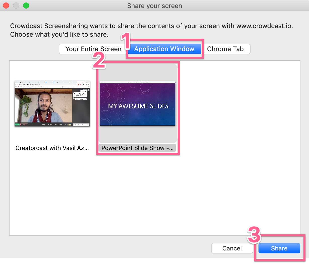 Application window within the screenshare options